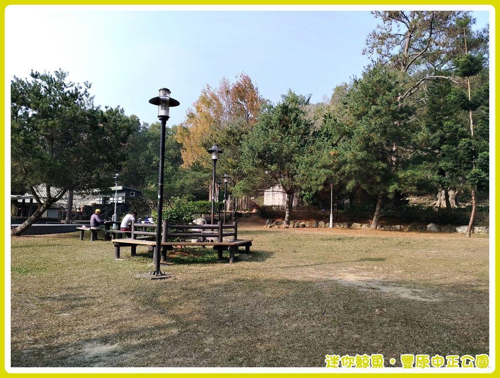 中正公園11.jpg