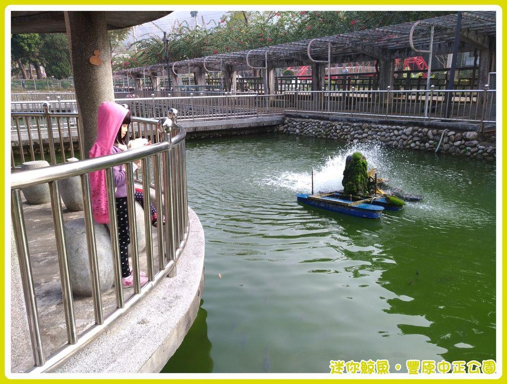 中正公園21.jpg