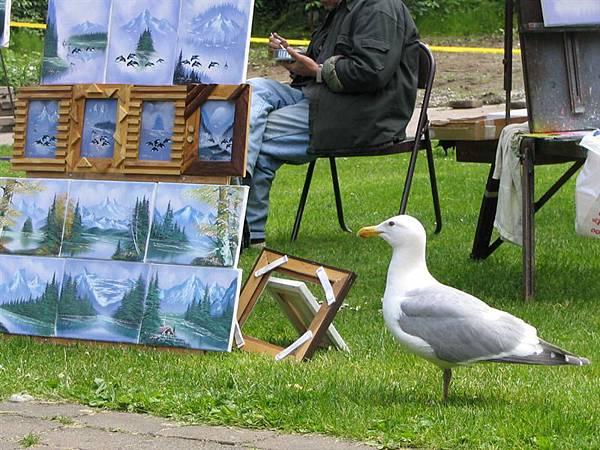 day2 (37)畫家廣場的海鷗