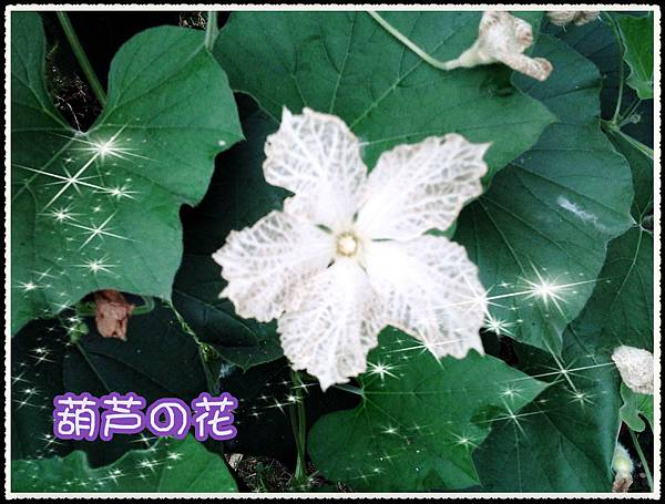 2012-06-06 10.30.42_副本