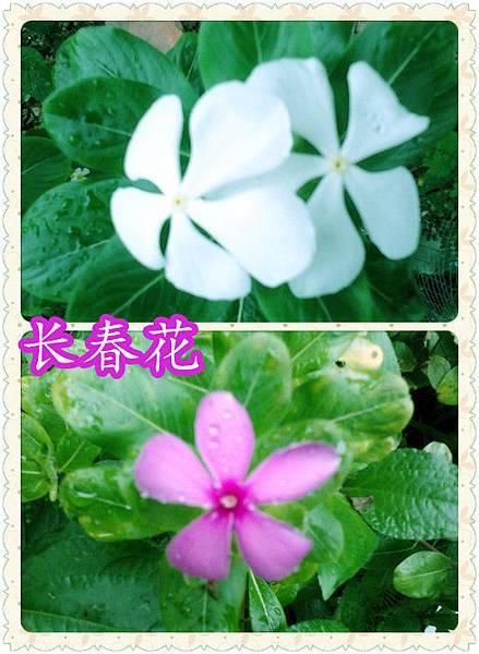 2012-06-09 10.59.15_副本_副本