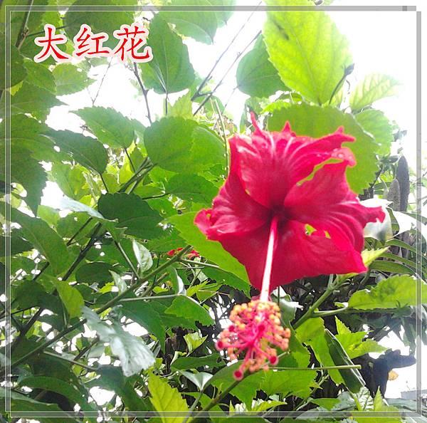 2012-06-09 11.12.13_副本_副本