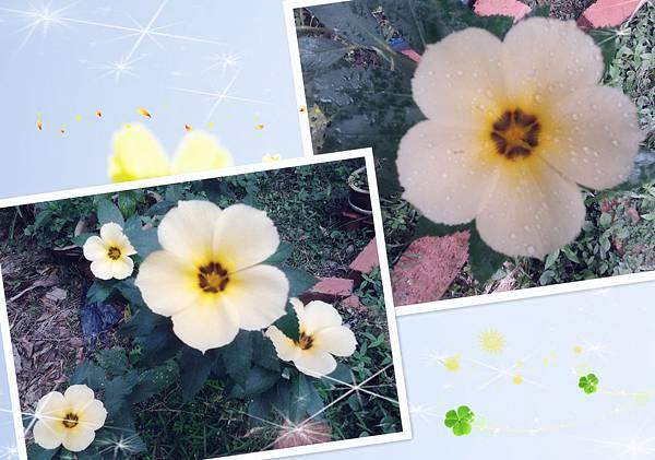 2012-06-06 09.45.53_副本