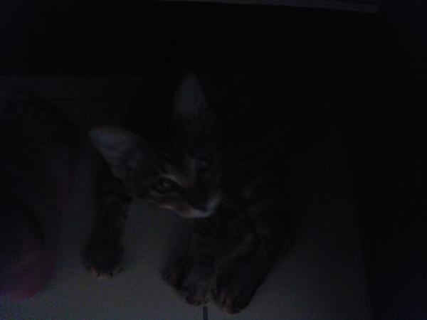 ˙書桌底下好暗噢˙