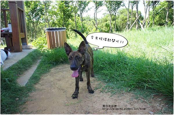 0724青青草原