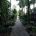 飯店中通往海灘的路上