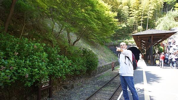 D3。嵐山小火車