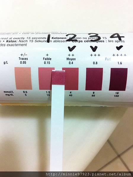 拜耳尿酮試紙