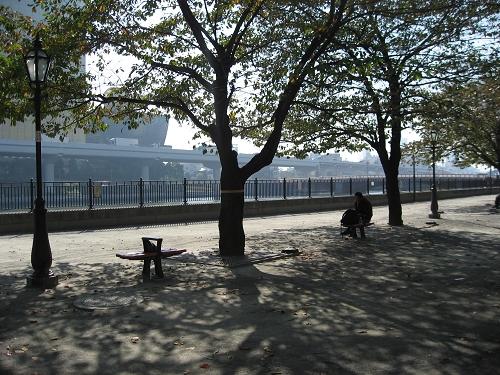 隅田川公園旁