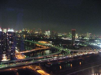 摩天輪上的夜景...