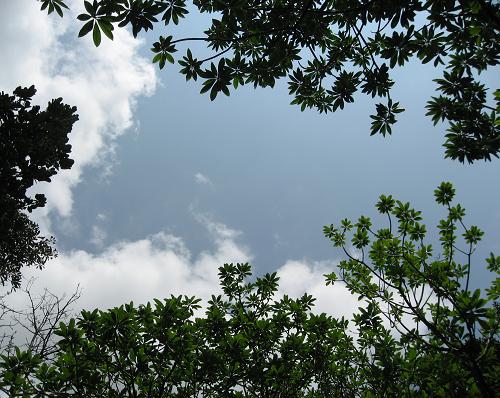 0503天空.jpg