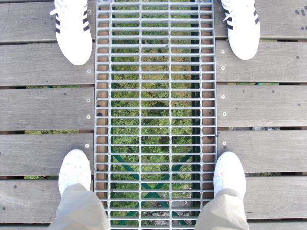 東埔吊橋往下看