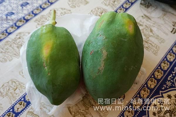 兩粒木瓜.jpg