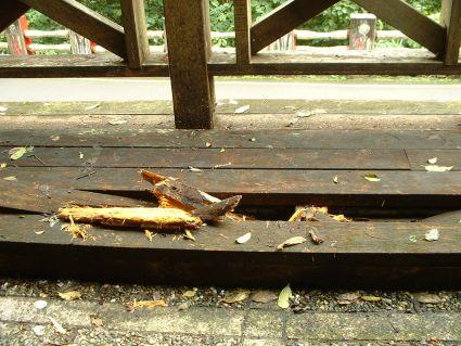 涼亭裡腐朽的木板