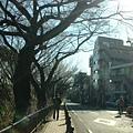 通往宮崎駿博物館的路