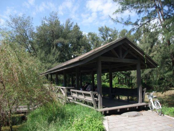 森林公園的琵琶湖棧道.jpg