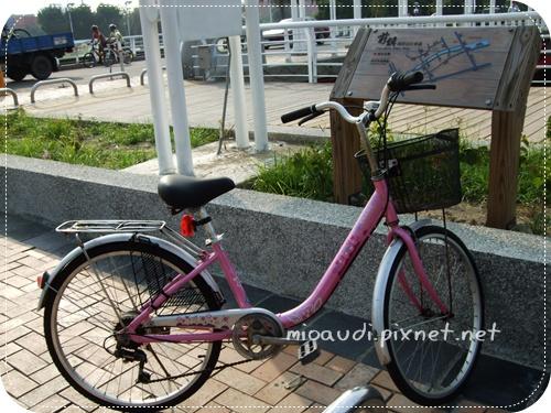 前鎮河岸自行車道-小粉紅.JPG