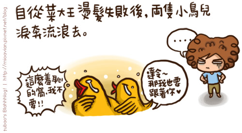 BirdStory01.jpg