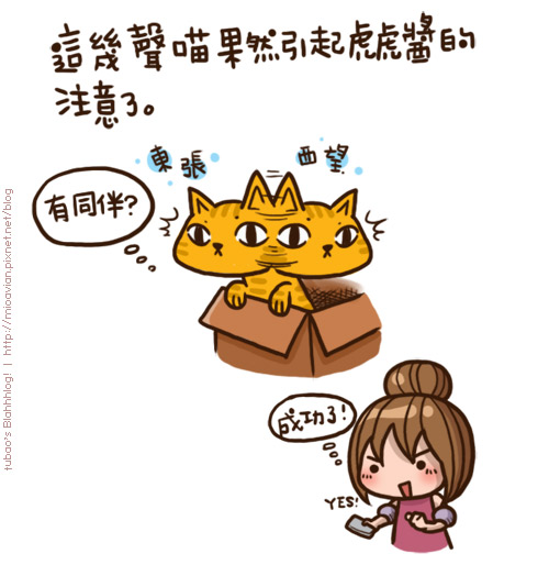 Human-to-Cat-Translator06.jpg