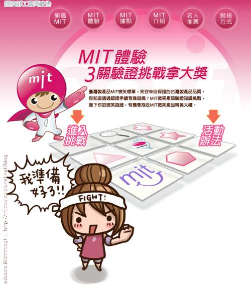 MIT13.jpg
