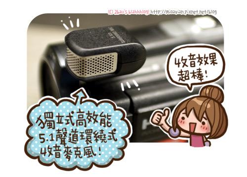 SONY-Handycam-PJ790V14