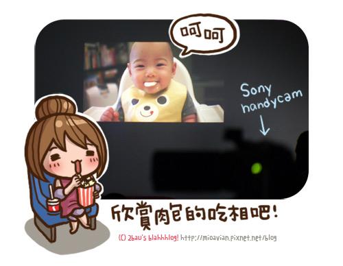 SONY-Handycam-PJ790V09