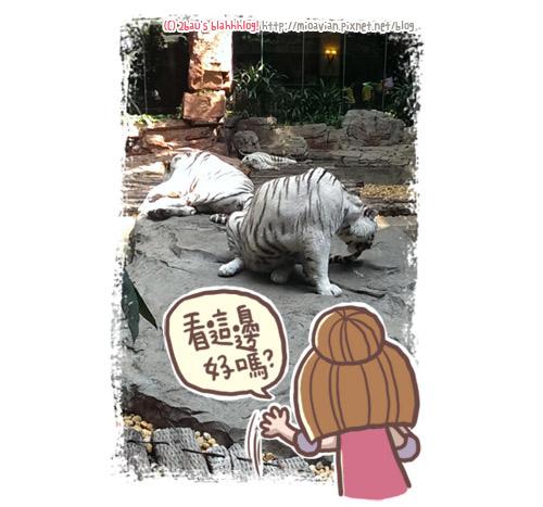 guangzhou25