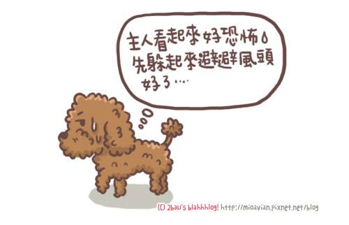狗大便事件11