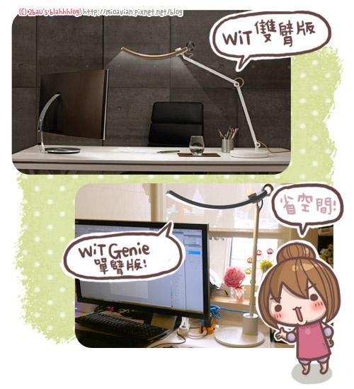 WiT-Genie09