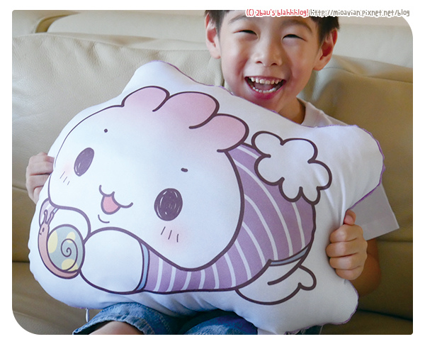 pillow-blog05