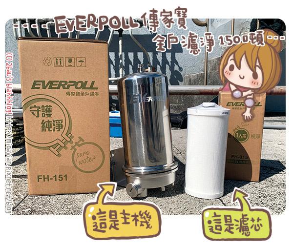 EVERPOLL02.jpg