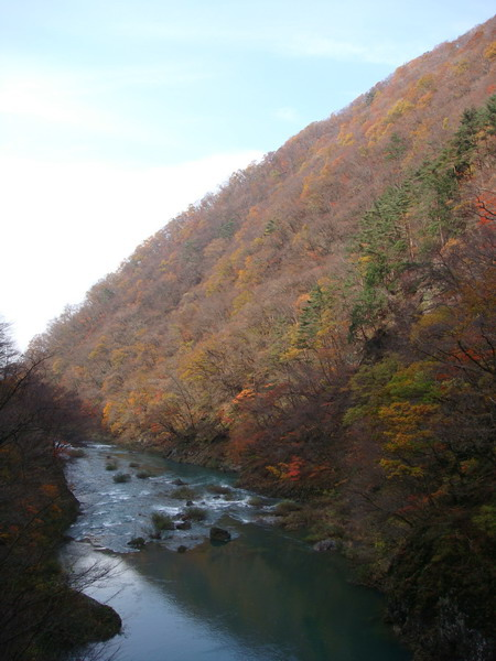 2009.11 114.jpg