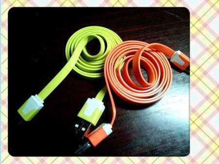 102-9-15-給兩個女兒的充電線.