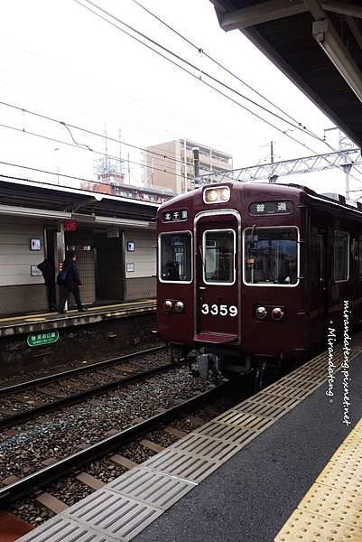 DSC02854.JPG