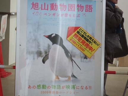 旭山動物園16.jpg