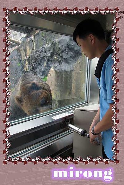 老公專心餵熊食物.jpg