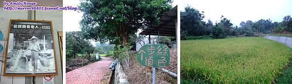 blog 100 Nov 春田窯 柴窯雞(柴燒桶子雞) 17.jpg