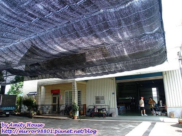 blog 1010627 三泰有機農場03