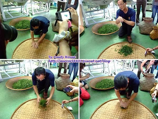 blog 1010627 三泰有機農場16