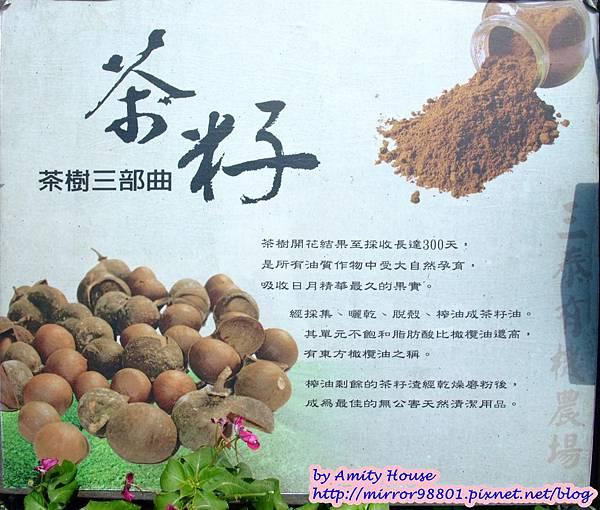 blog 1010627 三泰有機農場31