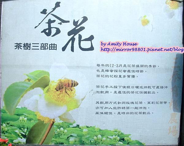 blog 1010627 三泰有機農場32