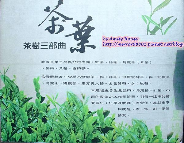 blog 1010627 三泰有機農場33