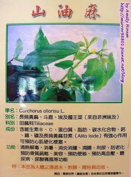 blog 1010627 田媽媽一佳村青草園37