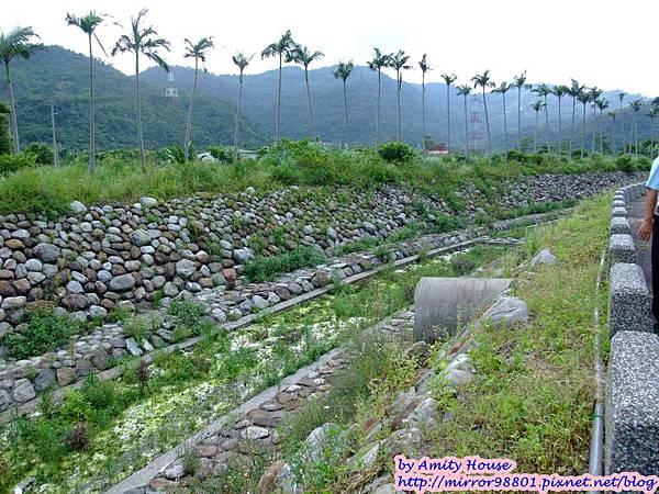 blog 1010627 大進有機農場26