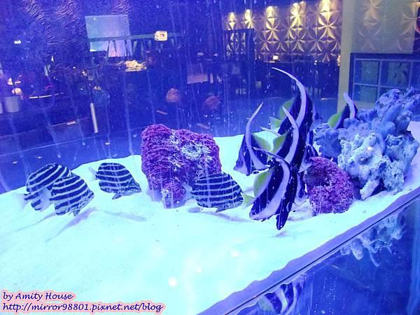 blog 1010320 八海精緻鍋物料理(西門新宿-海洋館)37