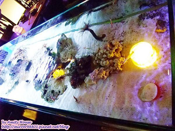 blog 1010320 八海精緻鍋物料理(西門新宿-海洋館)39