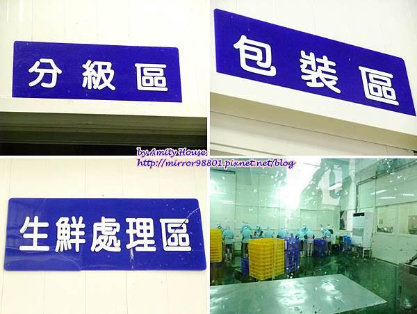 1010830 鑫龍食品公司 鹽漬鯖魚15