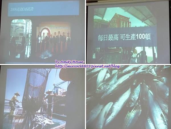 1010830 鑫龍食品公司 鹽漬鯖魚22