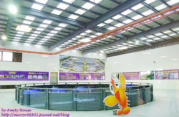 1010830 金車生技水產養殖研發中心 宜蘭礁溪金車履歷鮮蝦養殖場24