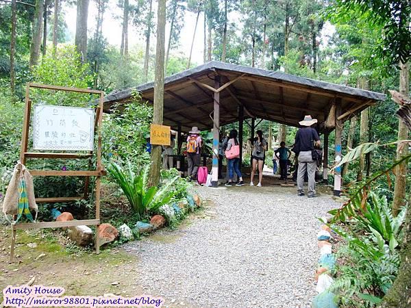 1010917 給樹的家 GESUW給樹營地 泰雅體驗營04竹筒飯